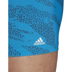 adidas P.Blue Boxer Men sharp blue/white